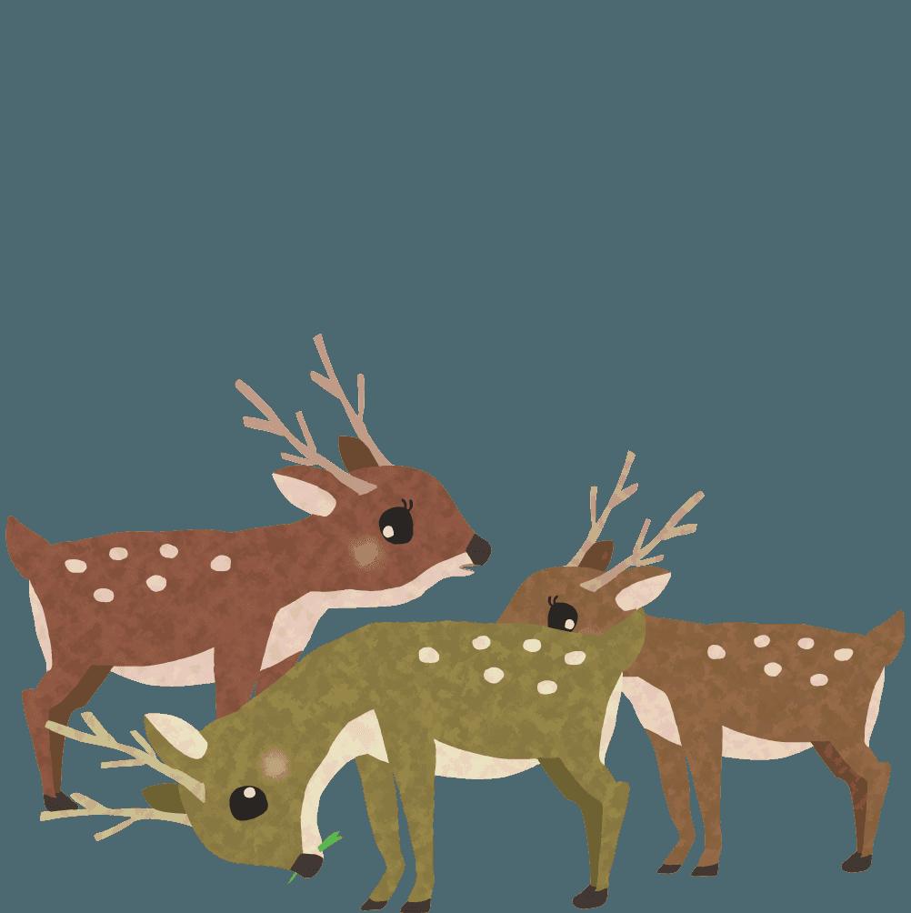 鹿の群れイラスト