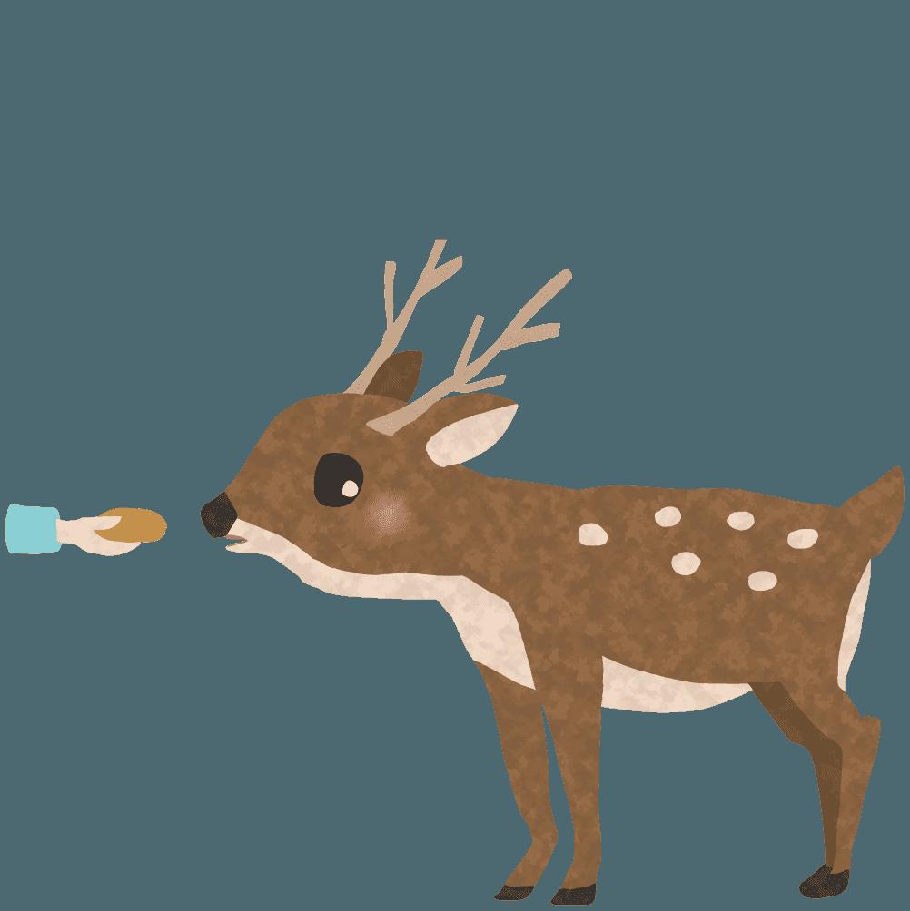 せんべいをもらう鹿イラスト