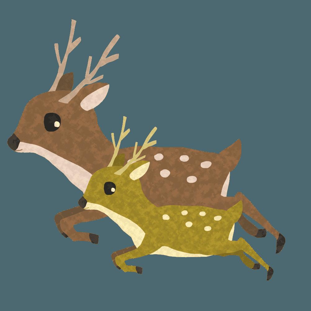 親子で飛び跳ねる鹿イラスト