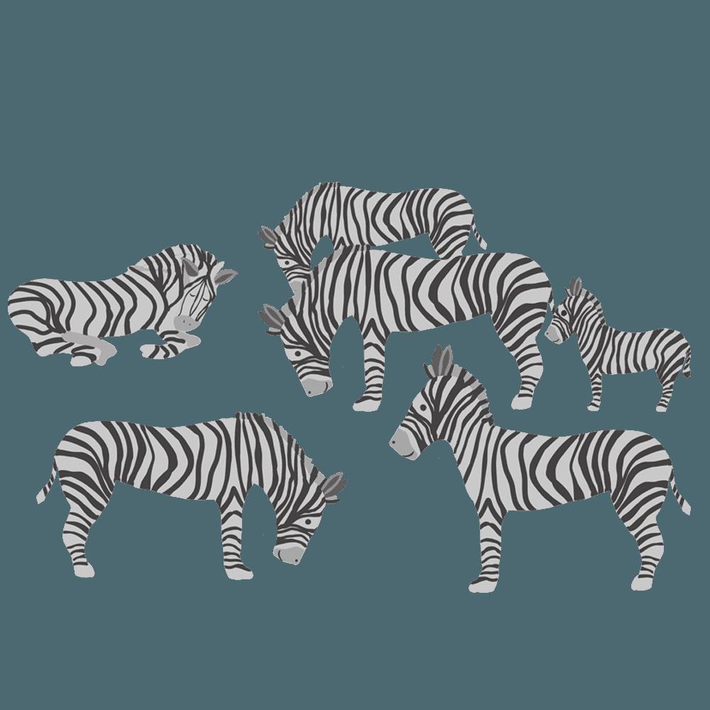 シマウマの群れ生活風景イラスト
