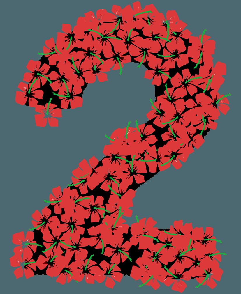 花柄の数字イラスト2