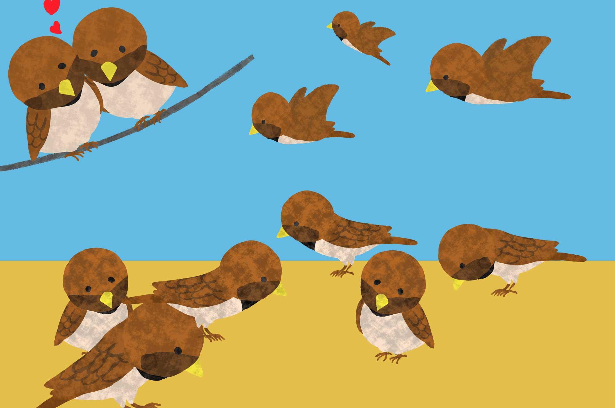 すずめのイラスト - 可愛い小鳥の無料素材集