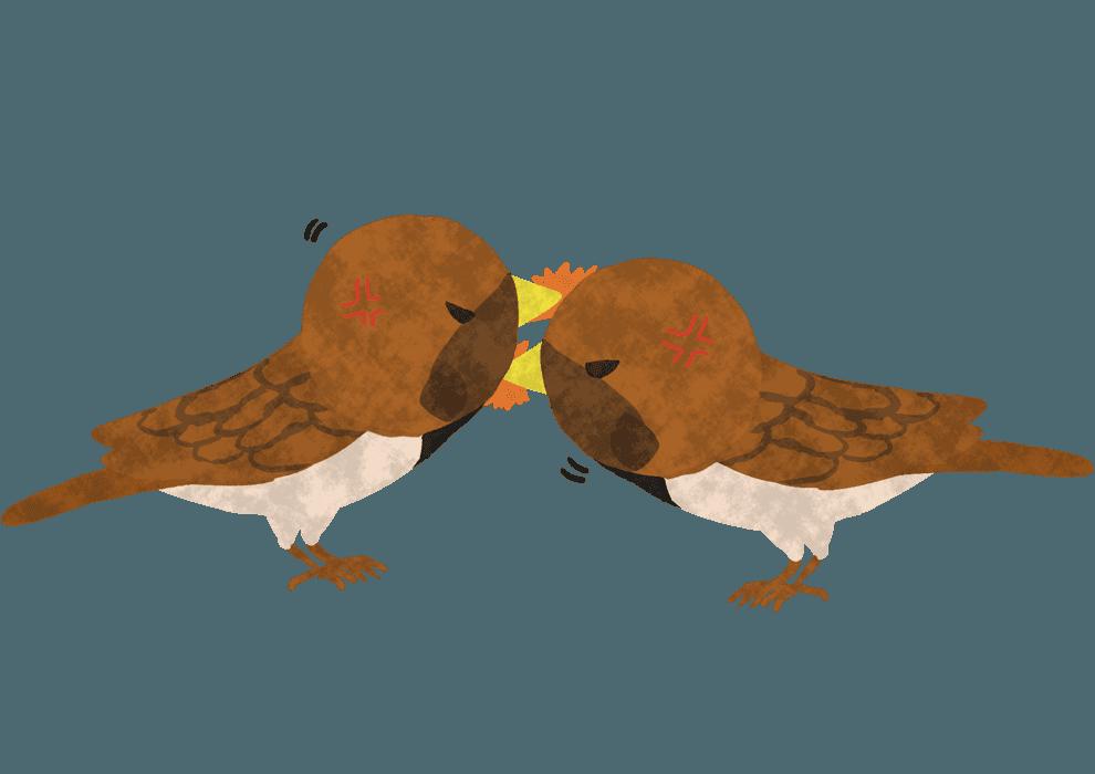 喧嘩する2匹のすずめイラスト