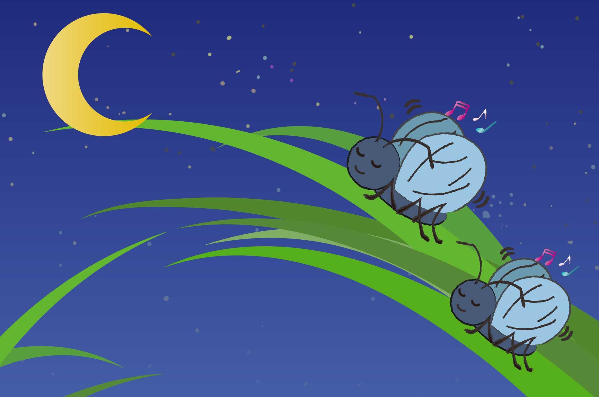 鈴虫のイラスト - 夜の虫の大合唱が風流な昆虫素材