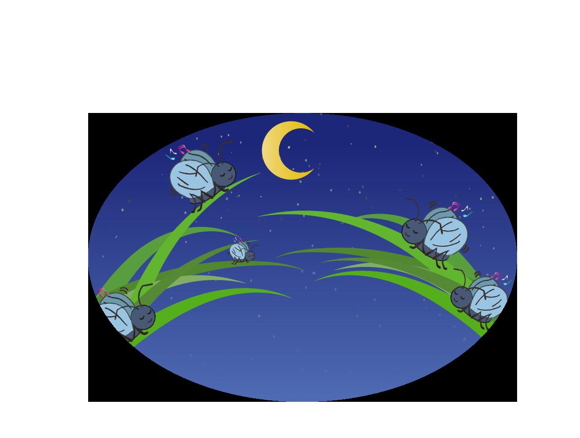 夜の虫の大合唱のイラスト