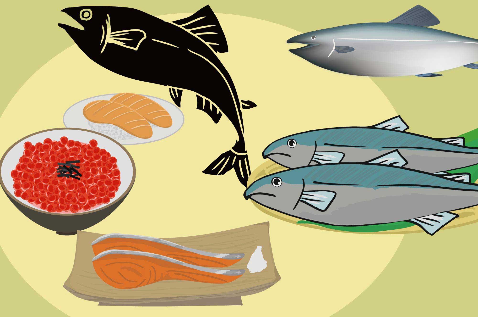 鮭イラスト - シャケの切り身といくらの無料イラスト
