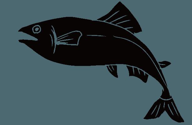 鮭のシルエットのイラスト