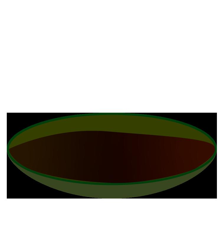 皿に注がれた醤油のイラスト