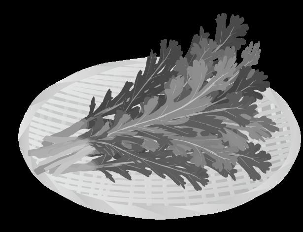 ザルにのった春菊(白黒)のイラスト
