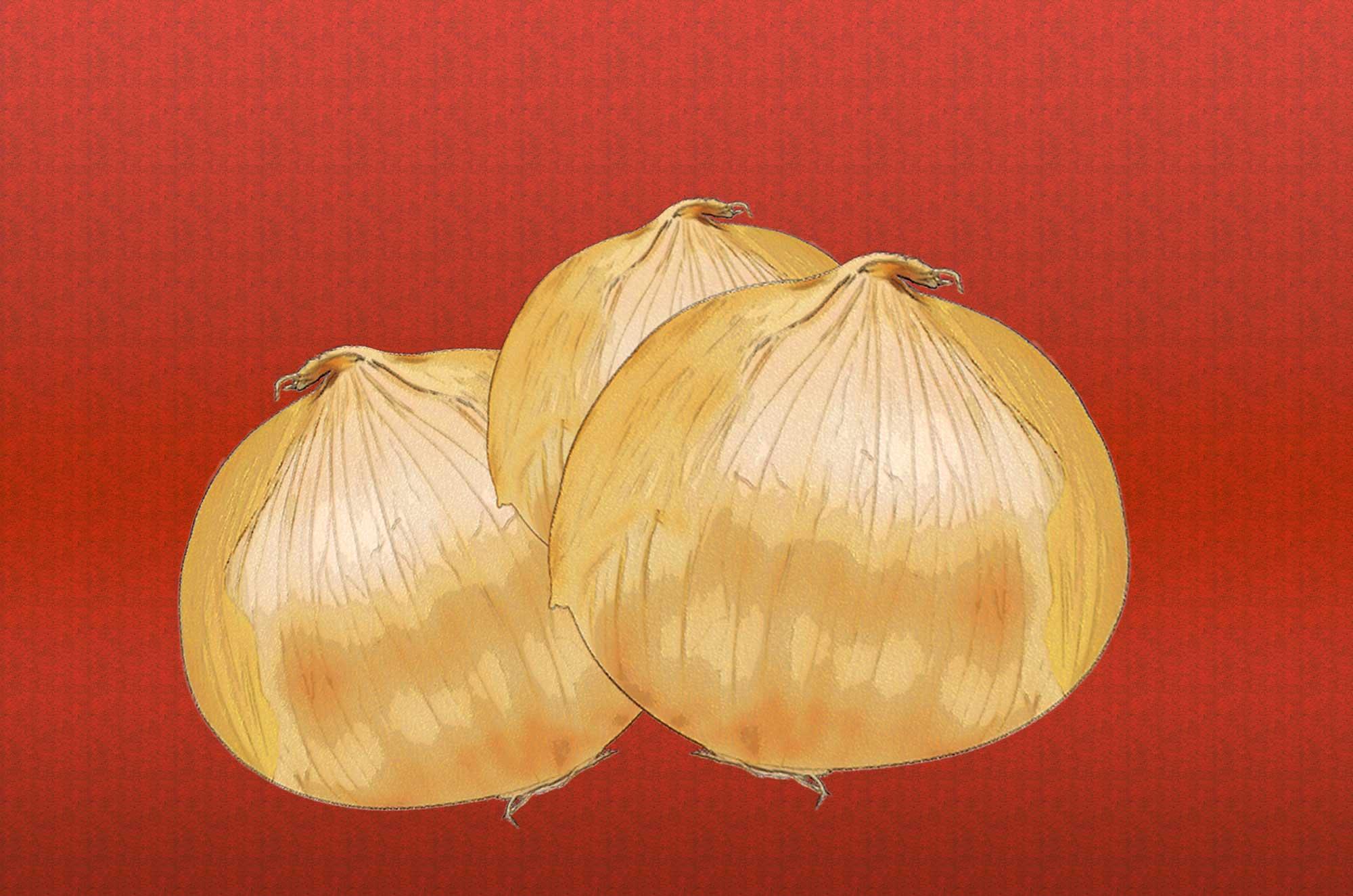玉ねぎのイラスト - 可愛いキャラとリアル・白黒のフリー素材