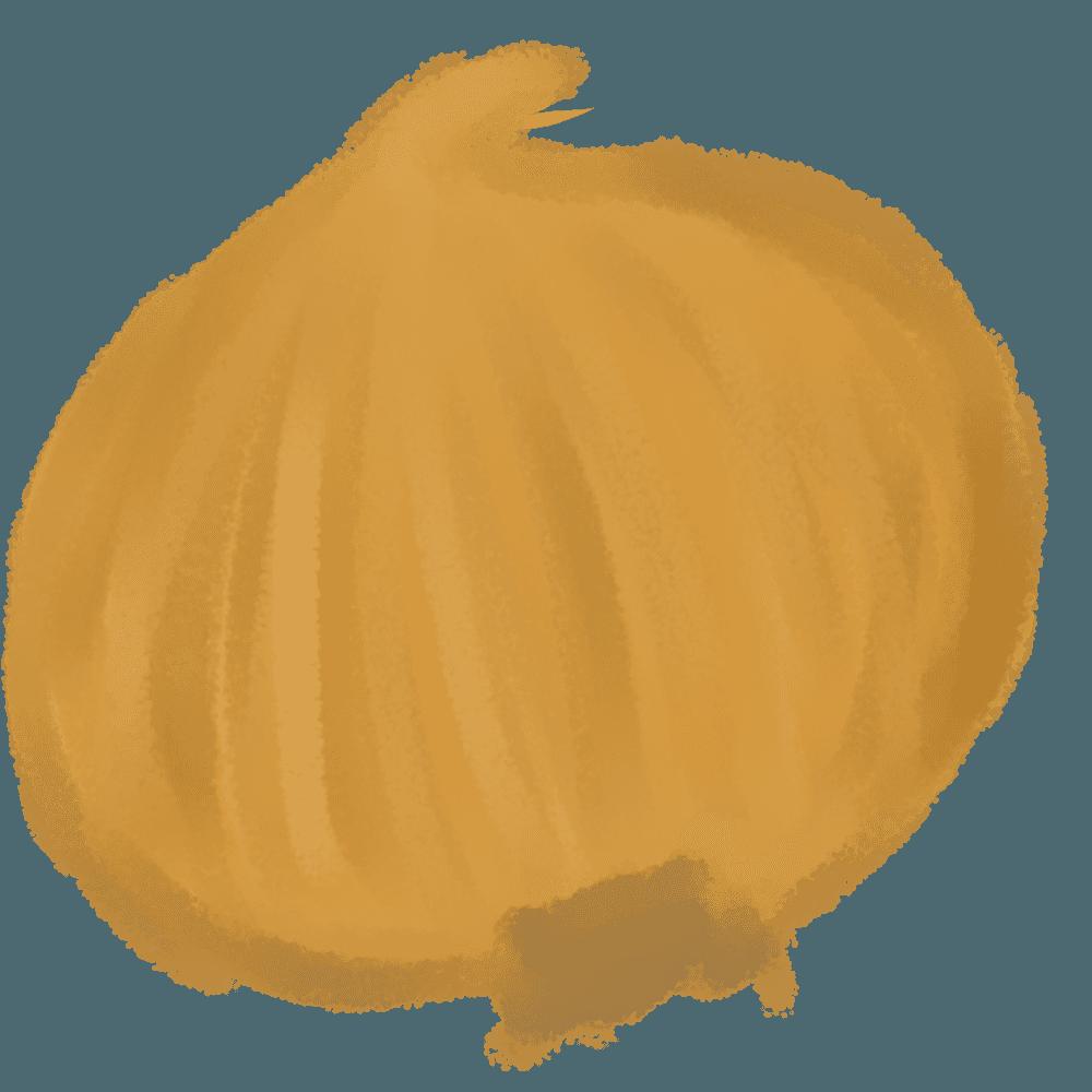 水彩玉ねぎイラスト