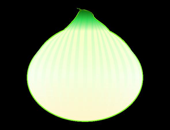 新玉ねぎのイラスト