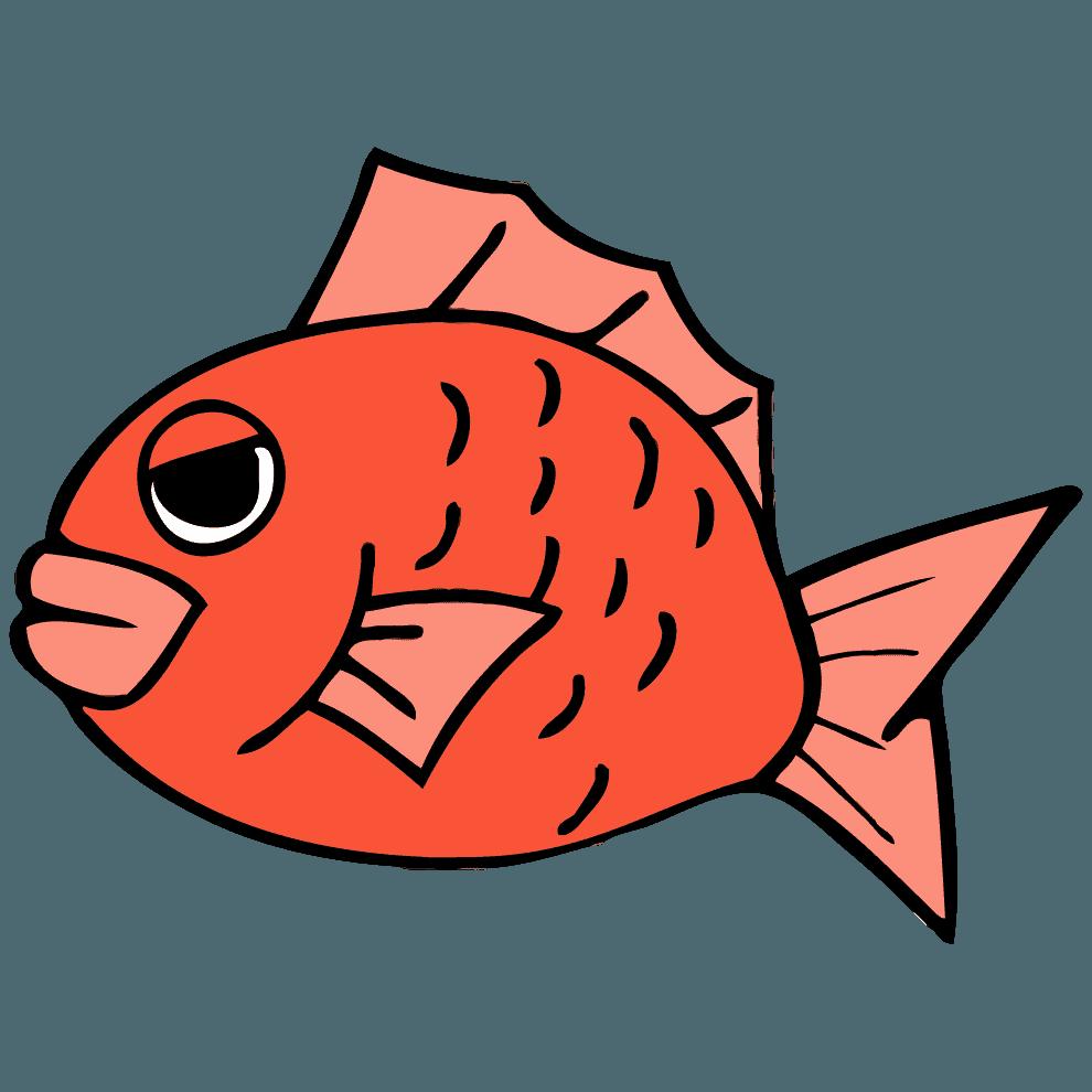怒る鯛イラスト