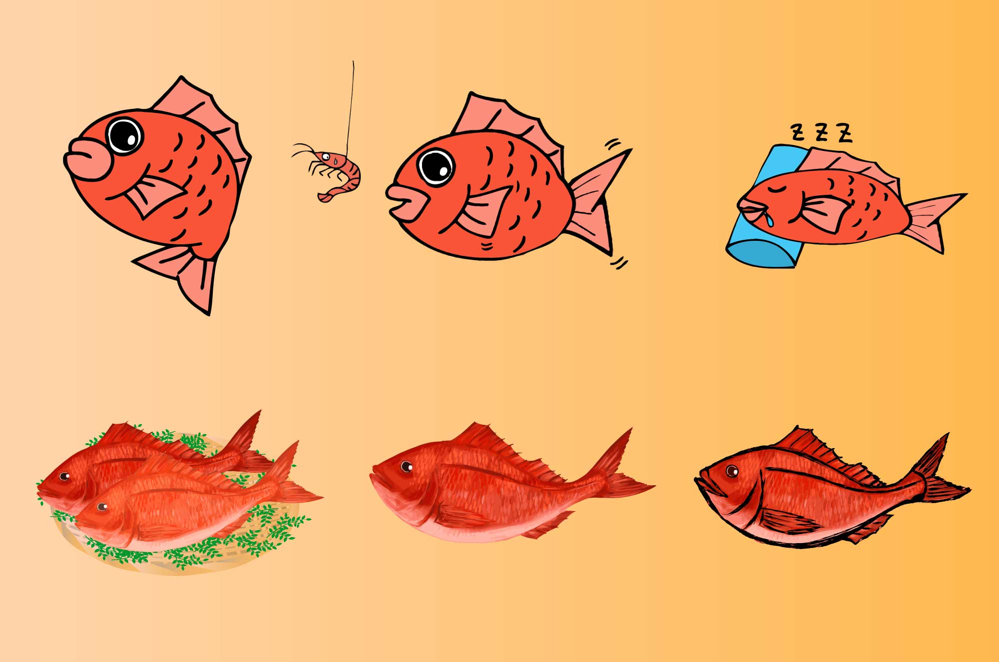 鯛イラスト - かわいい・リアルタッチの魚フリー無料素材