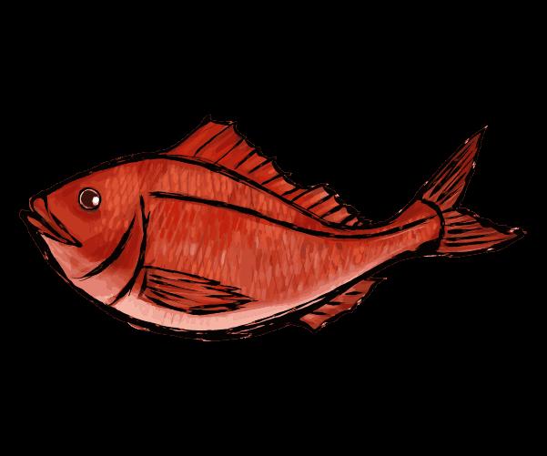 鯛の和風墨絵のイラスト