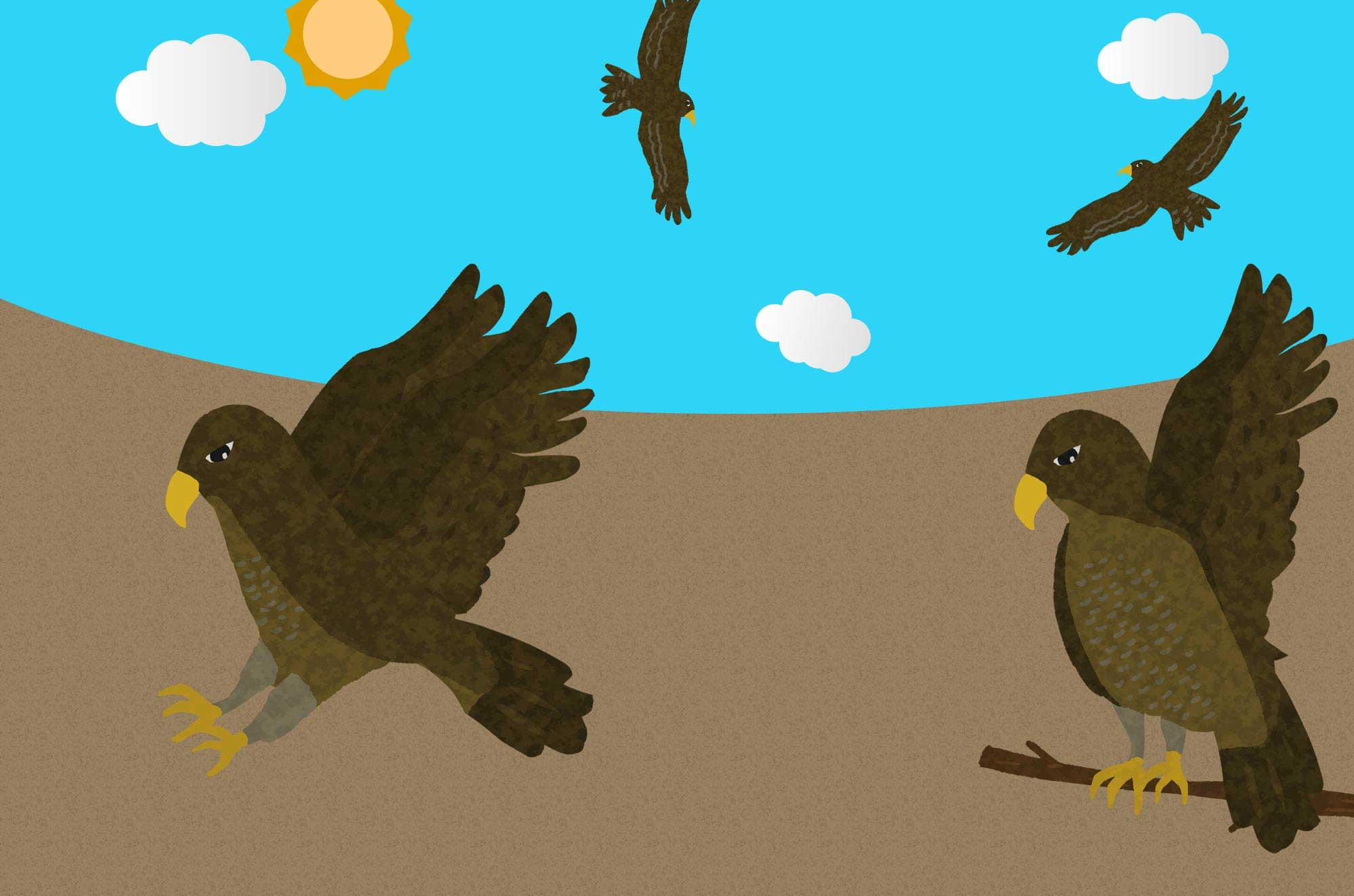 鷹イラスト - 手描きの可愛い鳥と面白い表情のフリー素材