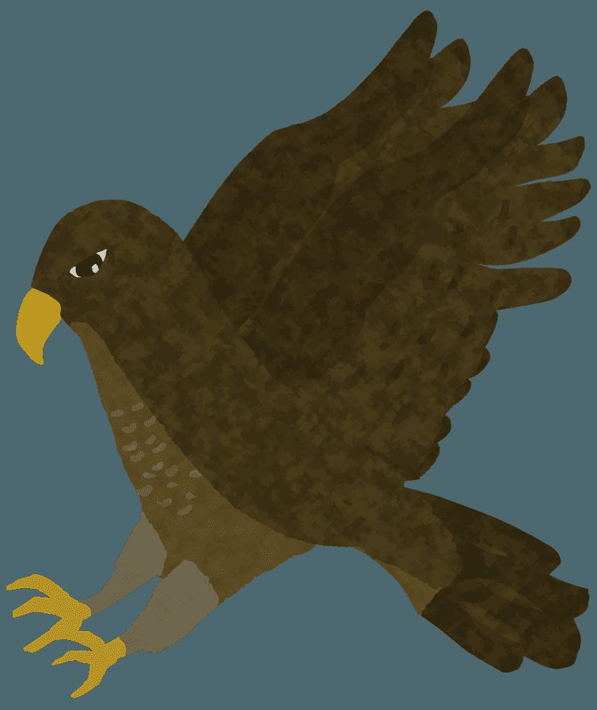 獲物を襲う鷹のイラスト