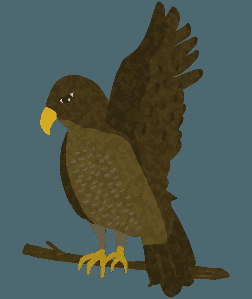 「よおっ!」と翼をあげる鷹のイラスト