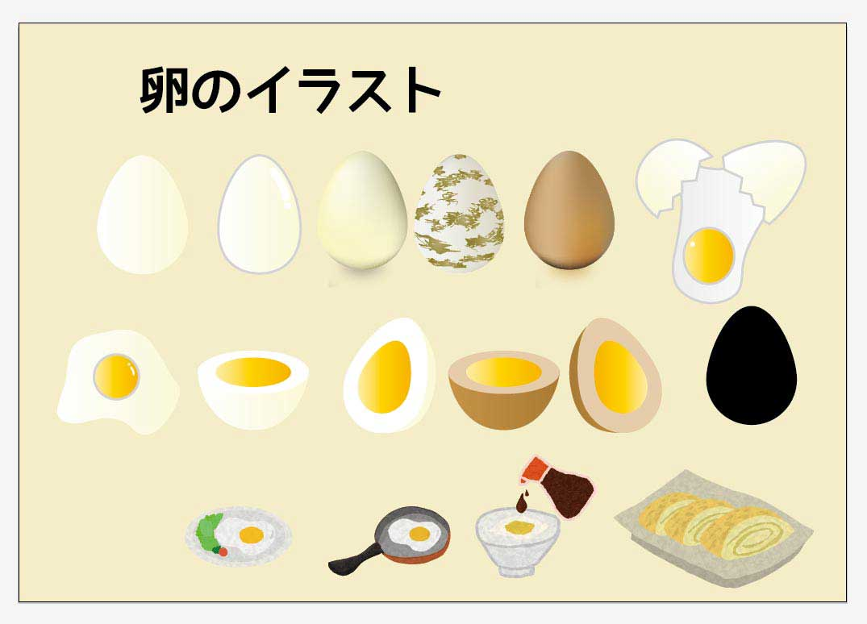 卵のベクターイラスト