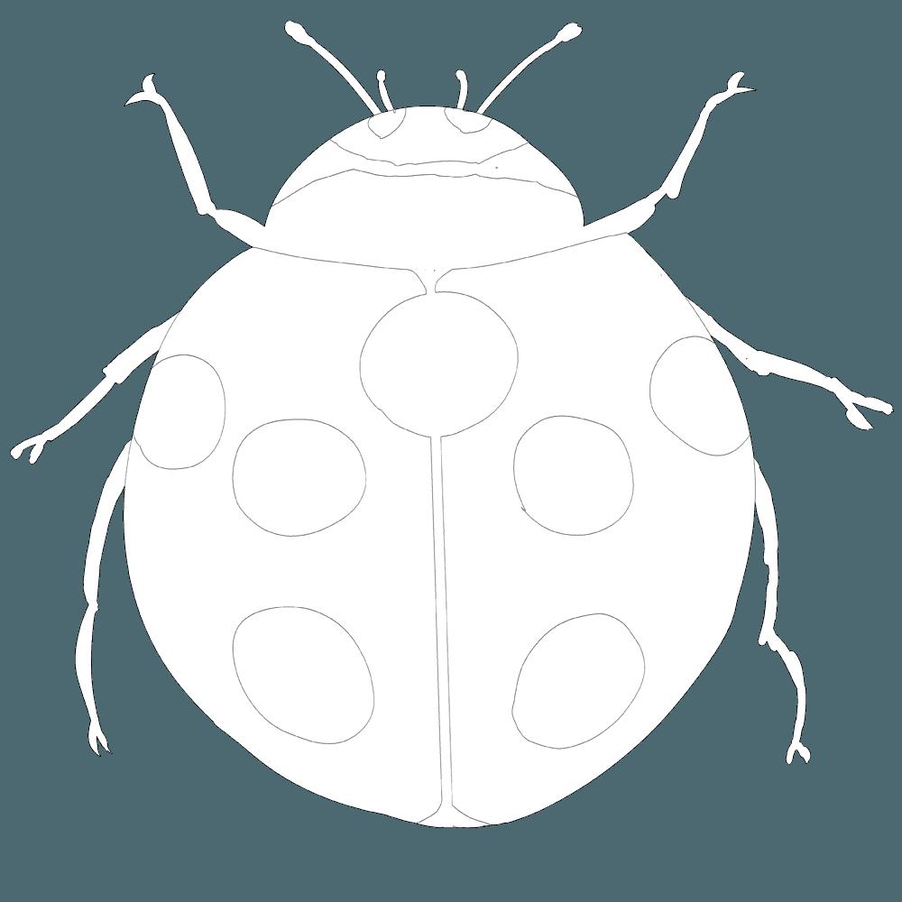 線画のてんとう虫イラスト