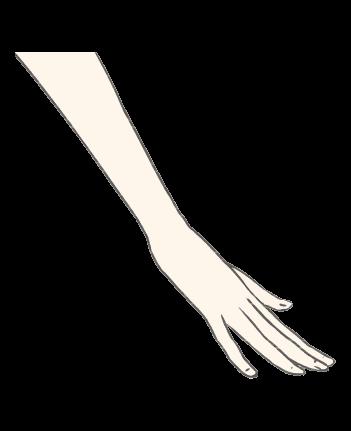 手のイラスト1