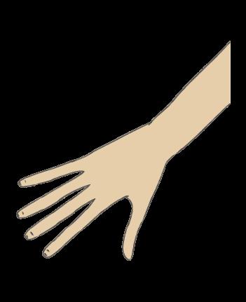 手のイラスト3