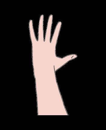 手のイラスト5