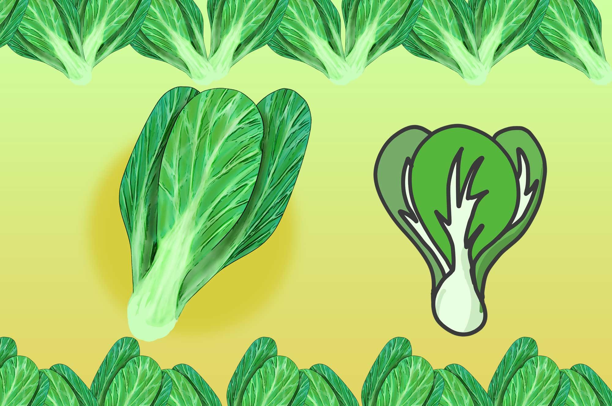 可愛いチンゲン菜のイラスト - 新鮮な中華野菜素材