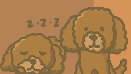 トイプードルのイラスト - 犬の可愛いキャラ無料素材