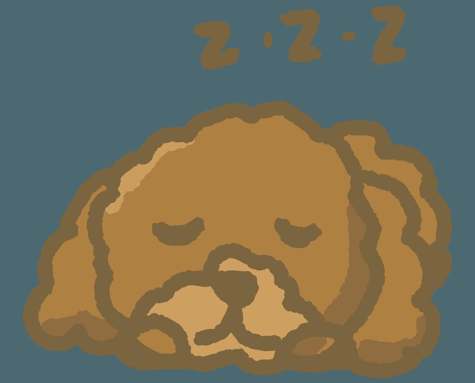 寝ているトイプードルのトイプードルのイラスト
