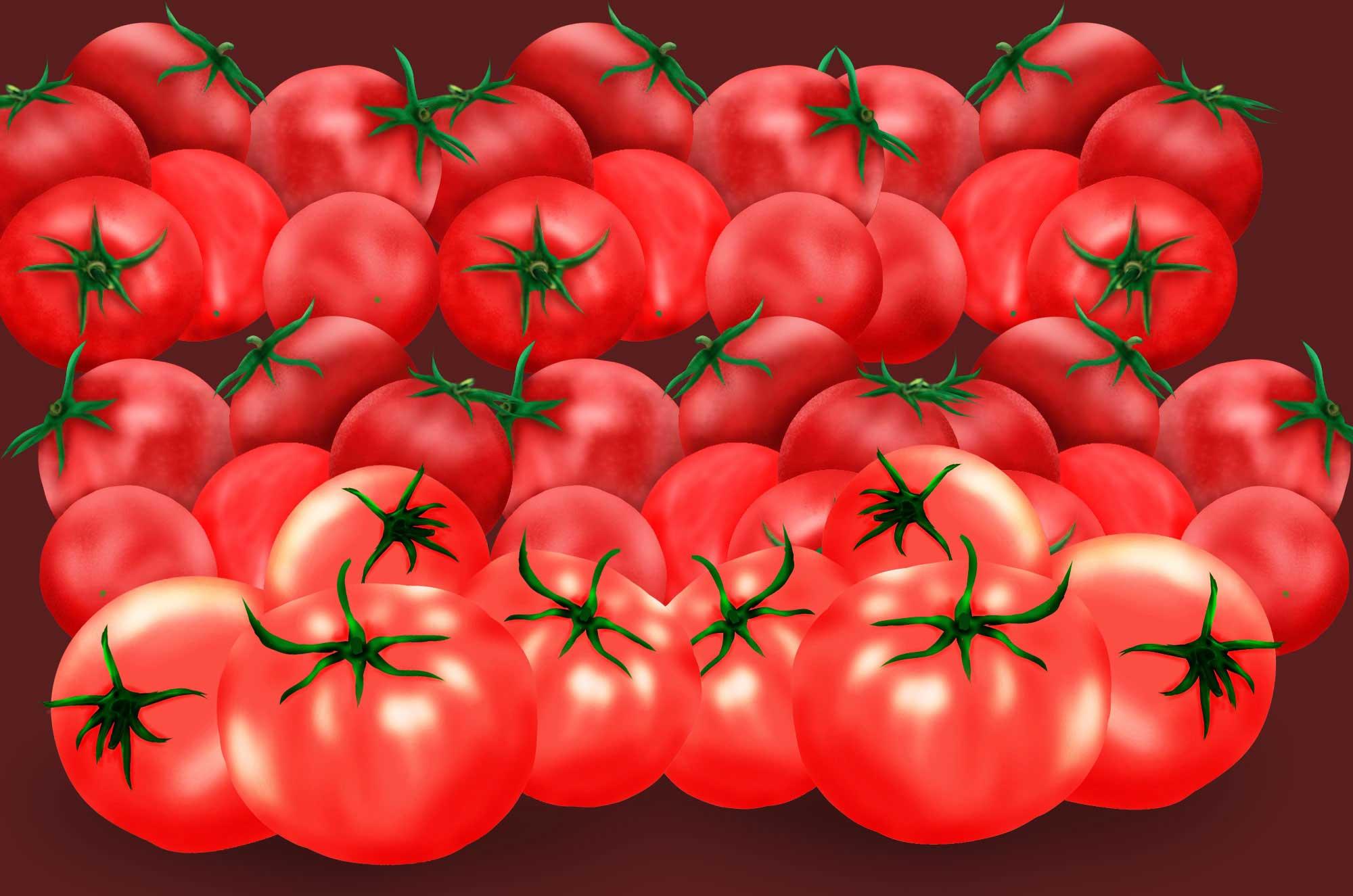トマトのイラスト - 可愛い野菜のフリー素材