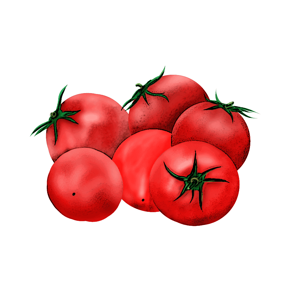 トマトのイラストにエッジのポスタリゼーション適用例