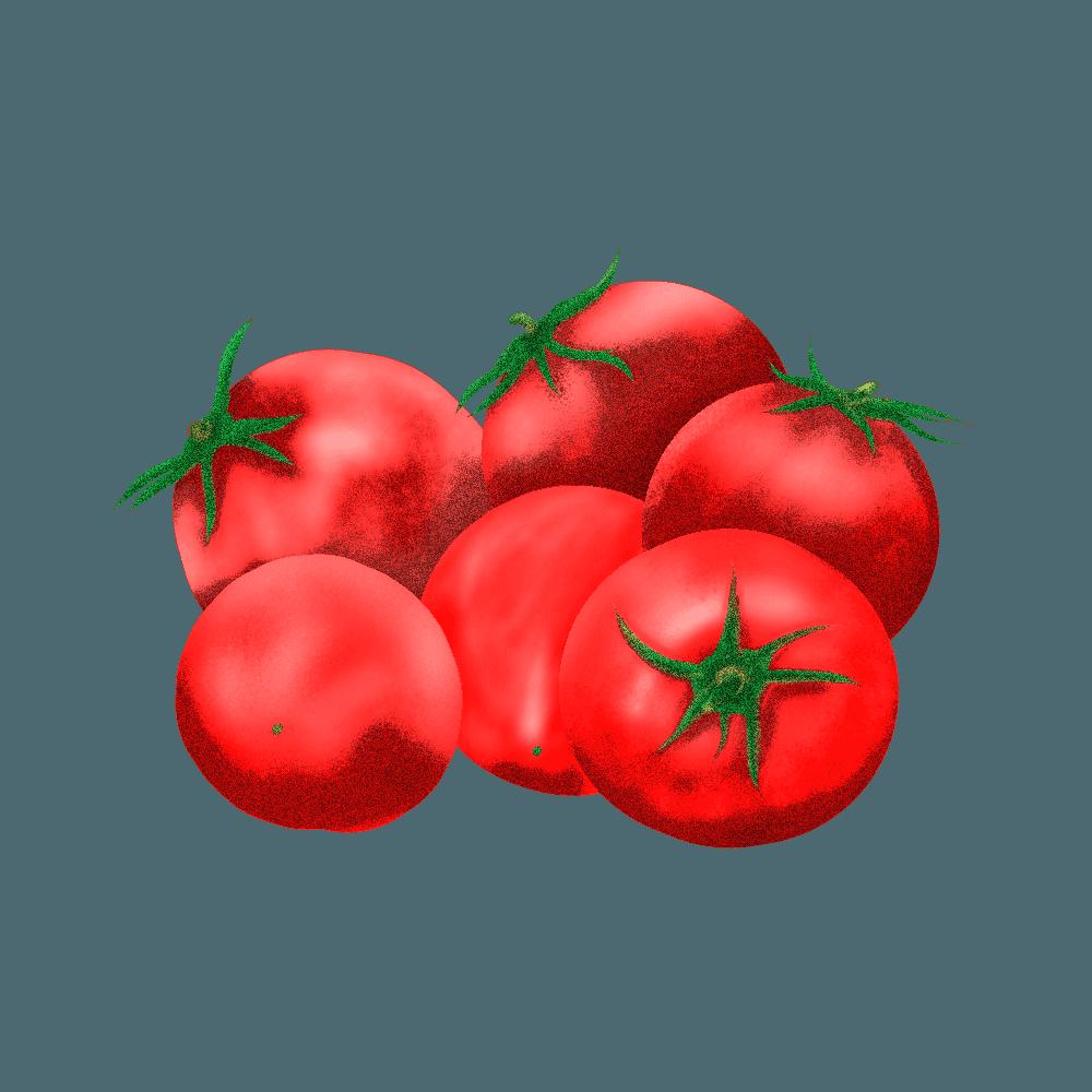 トマトイラスト素材にphotoshopフィルター粒状フィルム適用例
