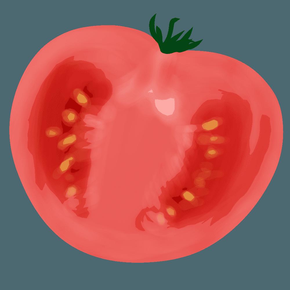 切ったトマトの縦置きイラスト