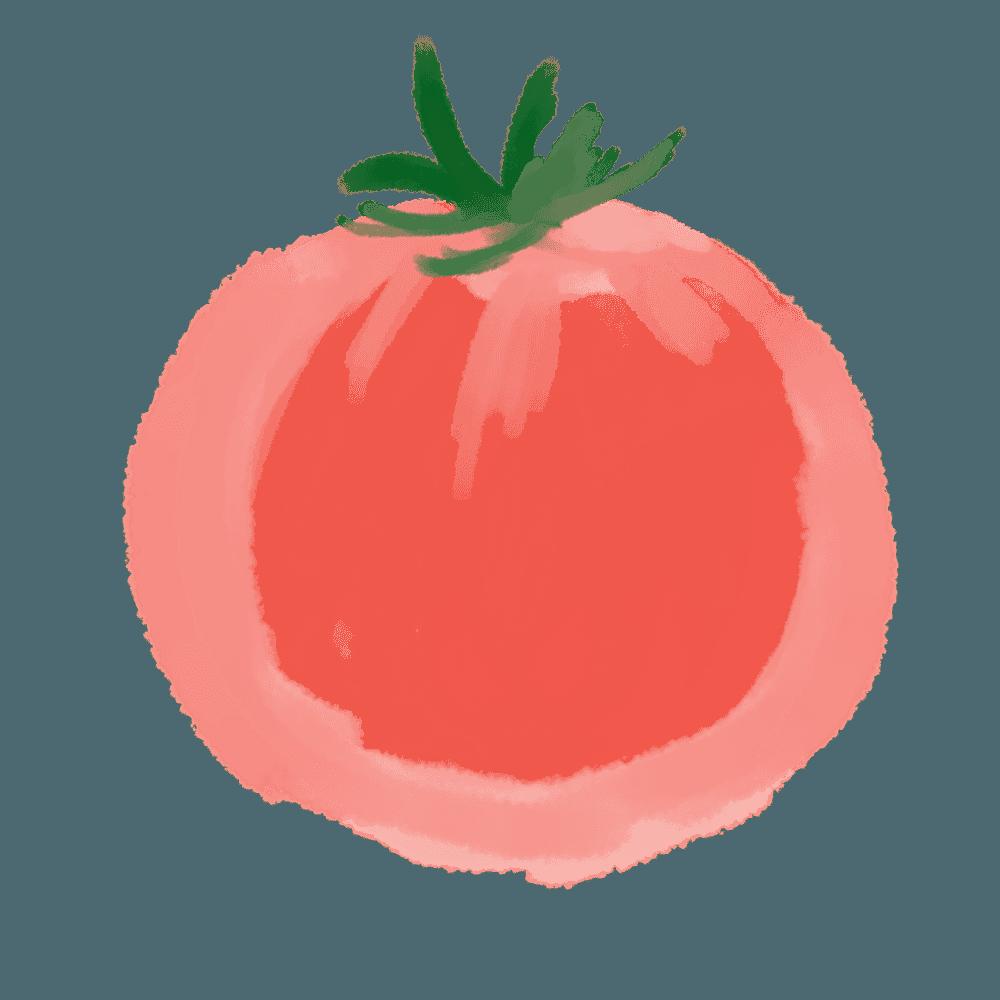 淡い水彩で描かれたトマトのイラスト