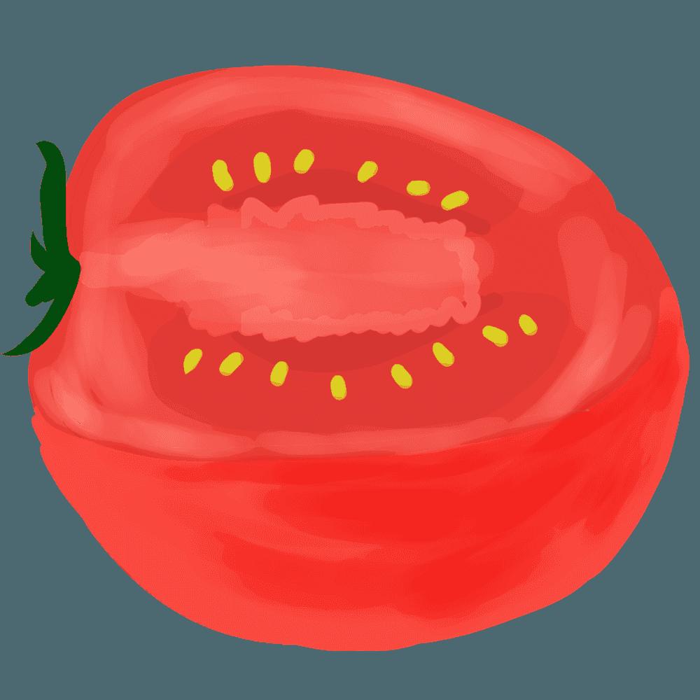 切ったトマト横置きイラスト