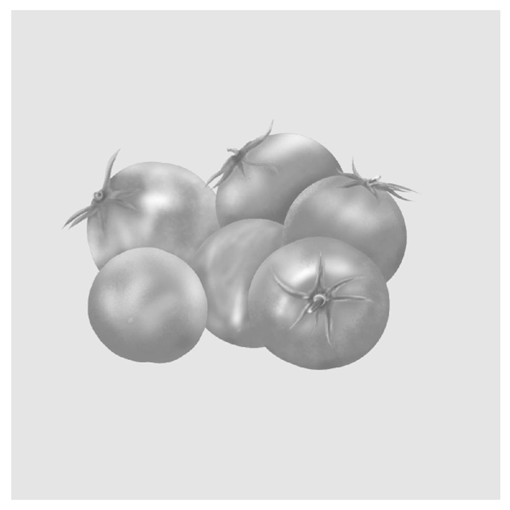 トマトイラスト(白黒)