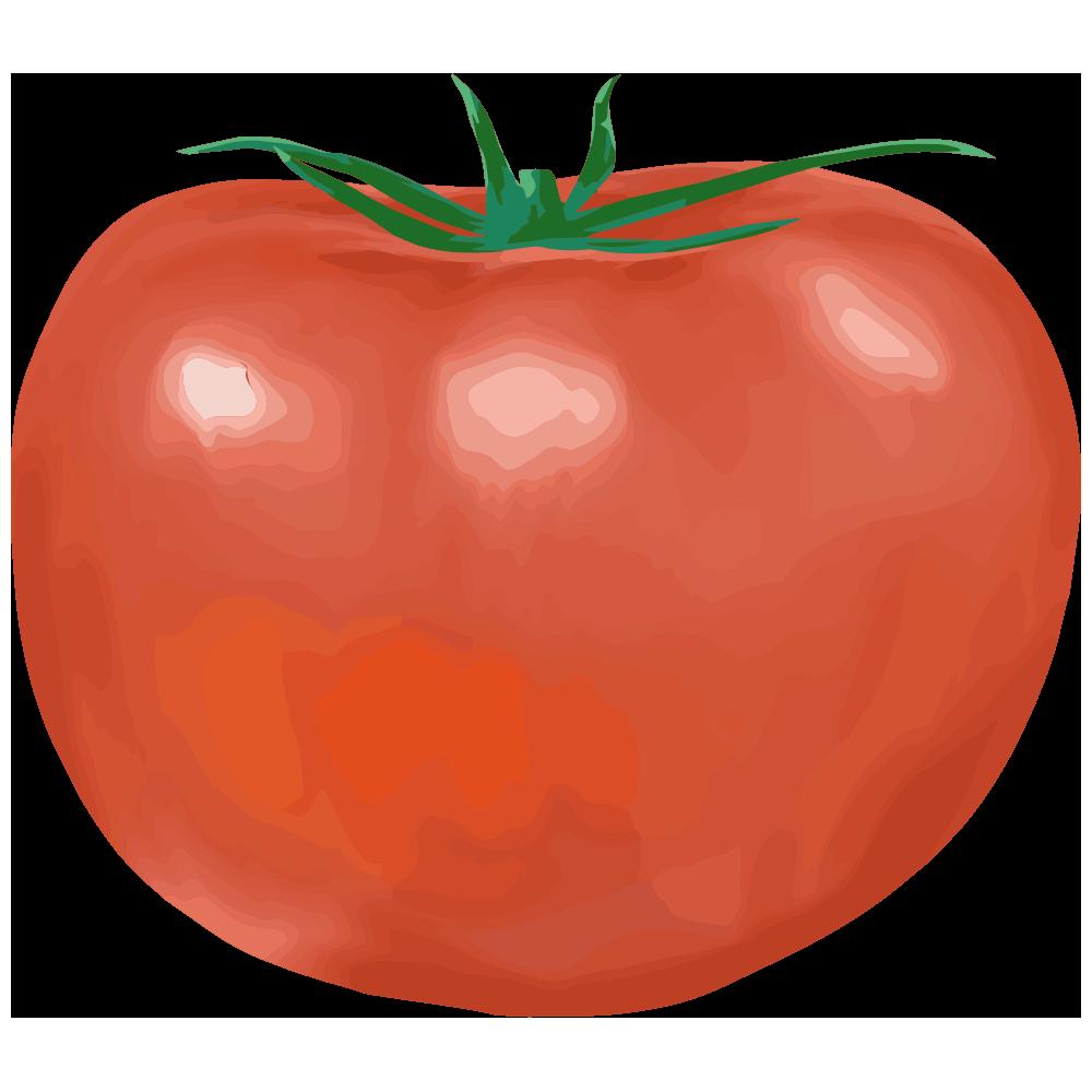 形の悪いトマトのイラスト