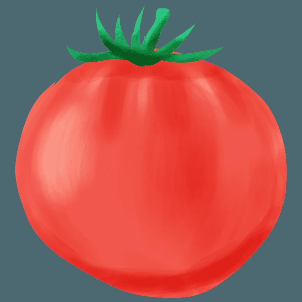 水彩風トマトのイラスト