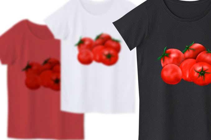 トマトレディースTシャツ