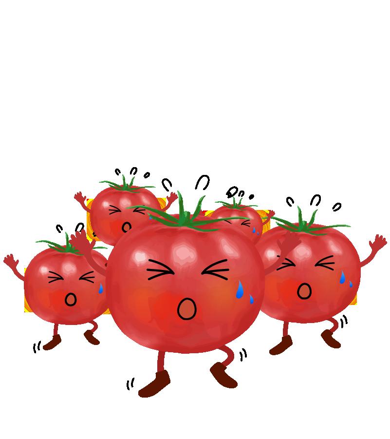 大勢のトマト走り出すイラストのイラスト