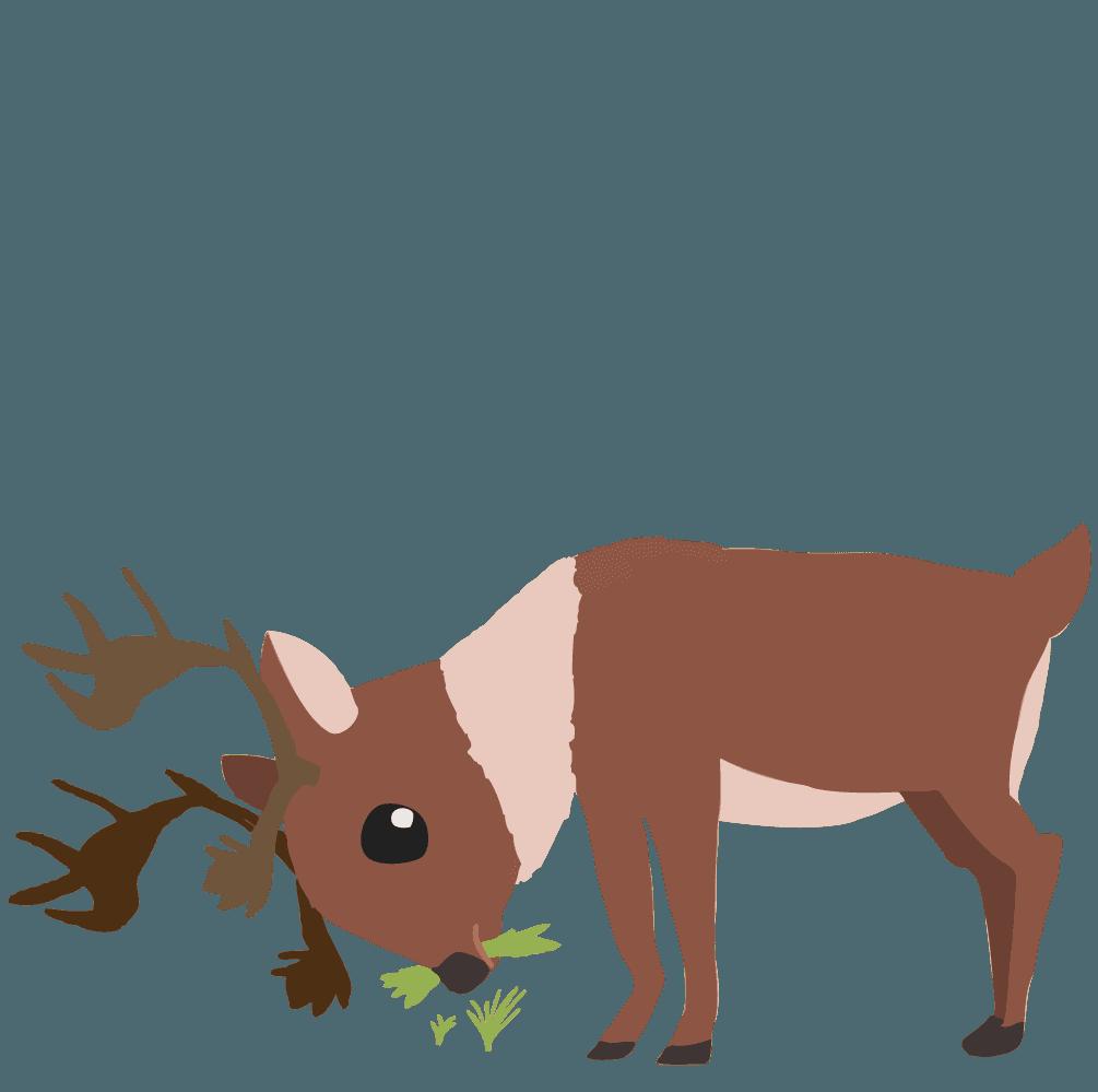餌を食べるトナカイのイラスト