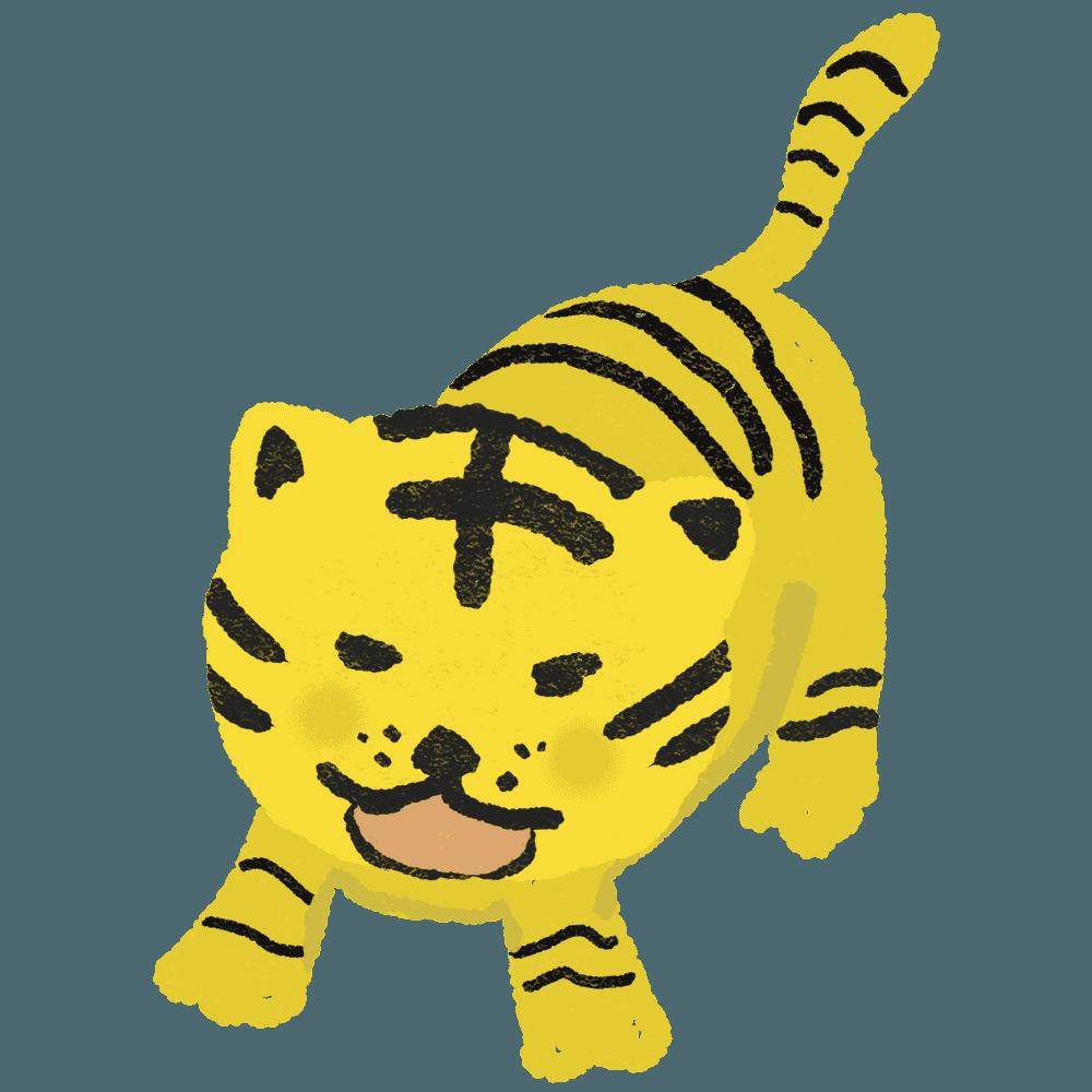 怒って威嚇する虎イラスト