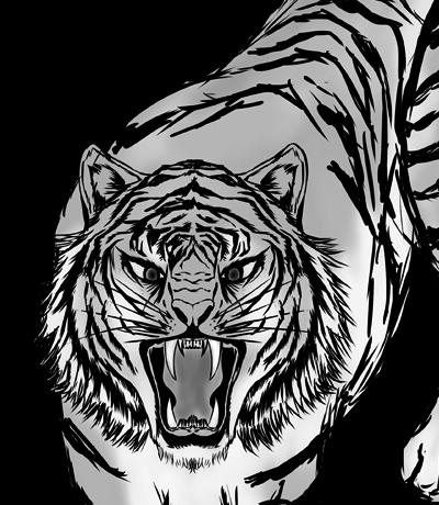 虎(白黒)のイラスト