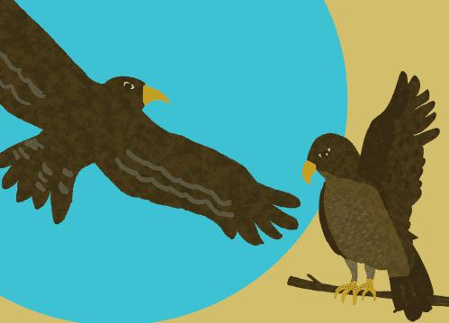 鷹のイラスト(背景つき)