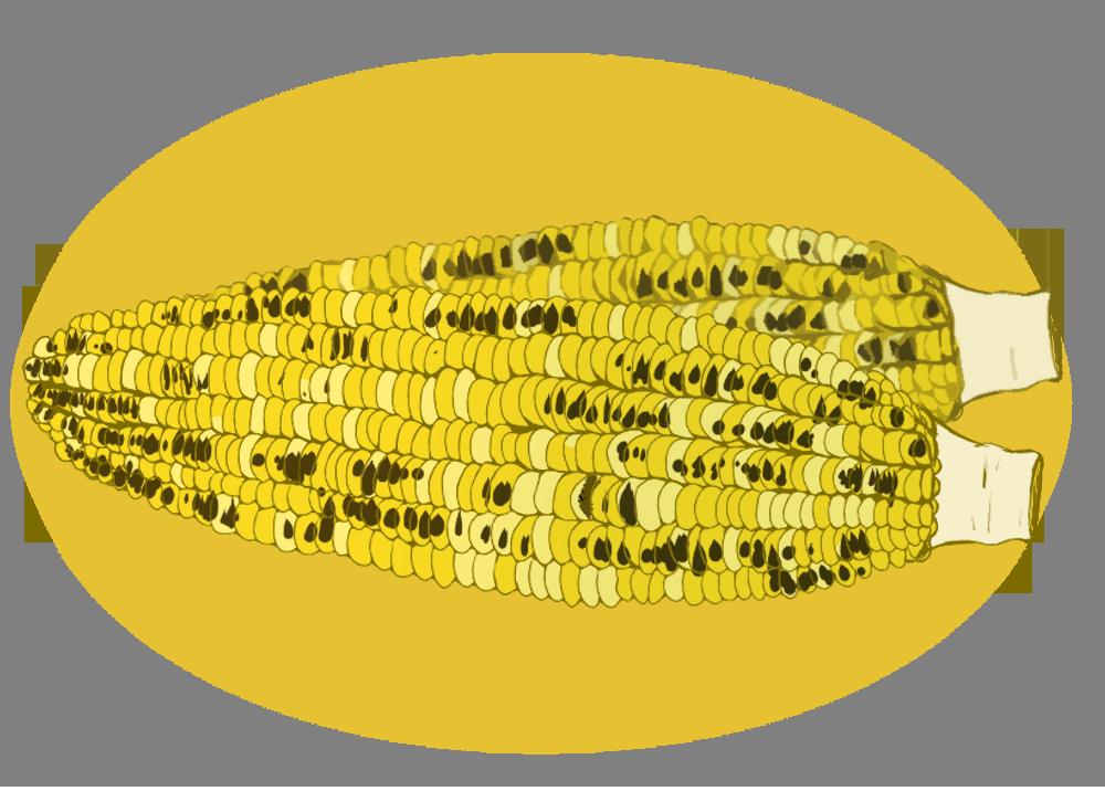 コーンのイラスト