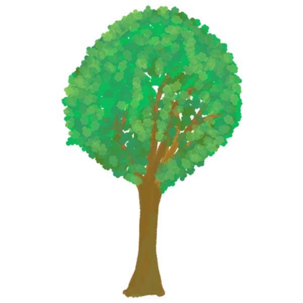 水彩とクレヨンの木のイラスト