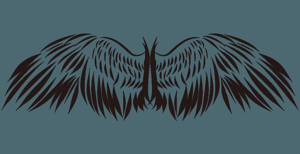 古代始祖鳥風のかっこいい翼のイラスト