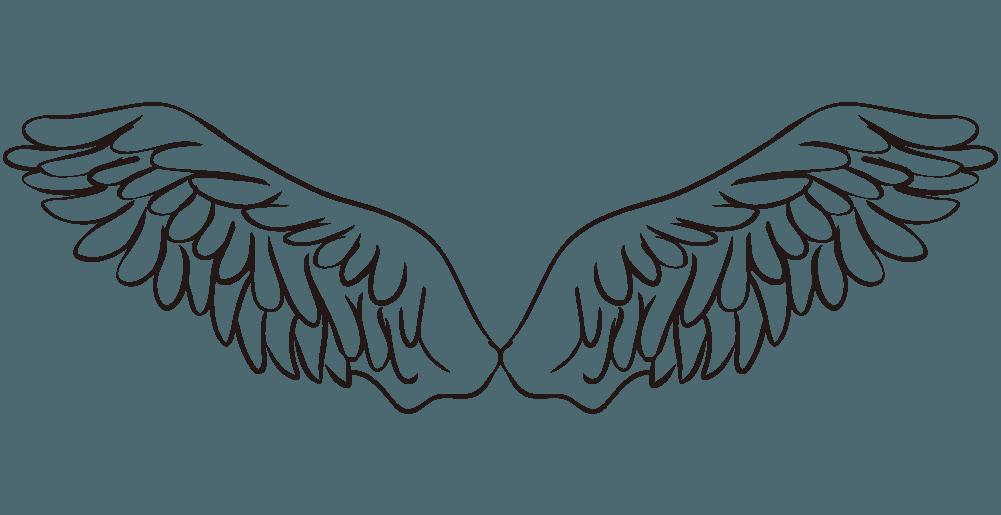 オオワシの翼のイラスト