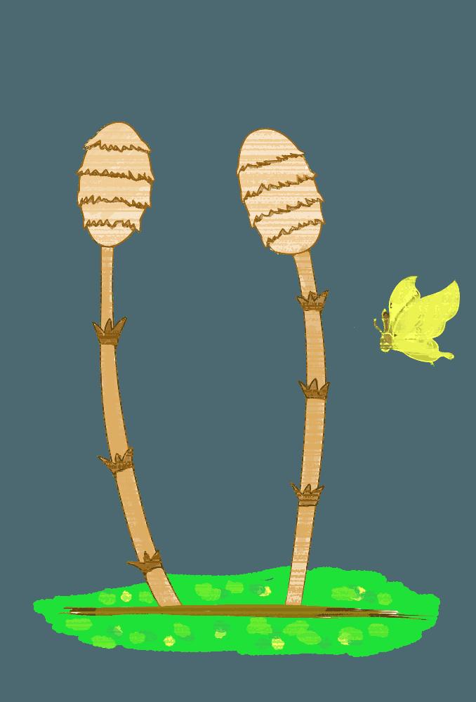 チョウチョとつくしの春イラスト